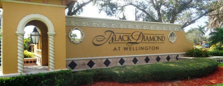 Black Diamond Homes For Sale in Wellington FL