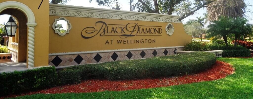 Black Diamond Homes For Sale in Wellington Florida