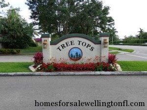 Wellington Florida Real Estate