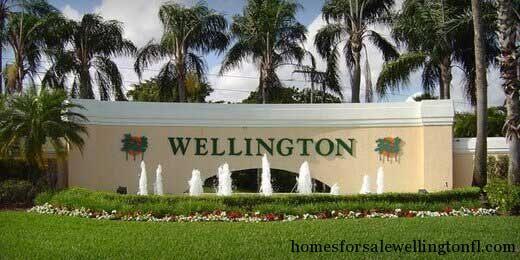 Wellington Florida Homes For Sale