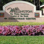 Wellington FL Single Family Homes For Sale October 2016