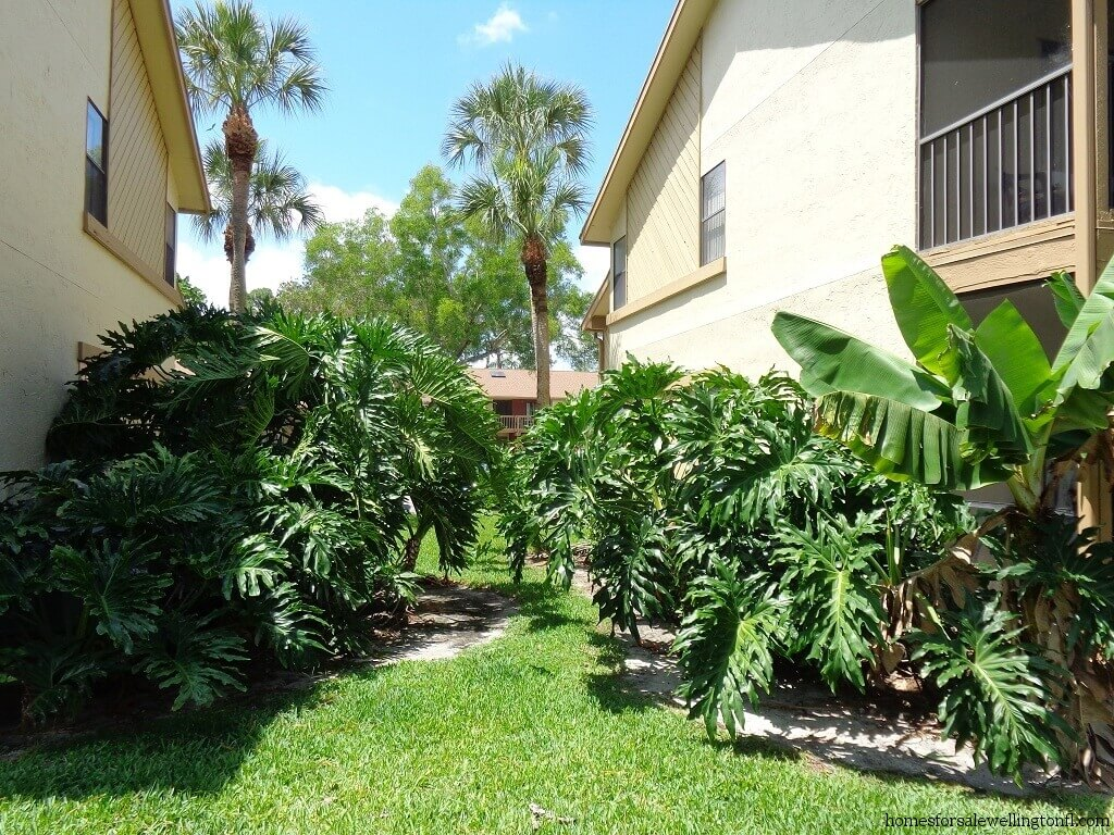 Sheffield woods homes for sale in wellington florida for Landscaping wellington