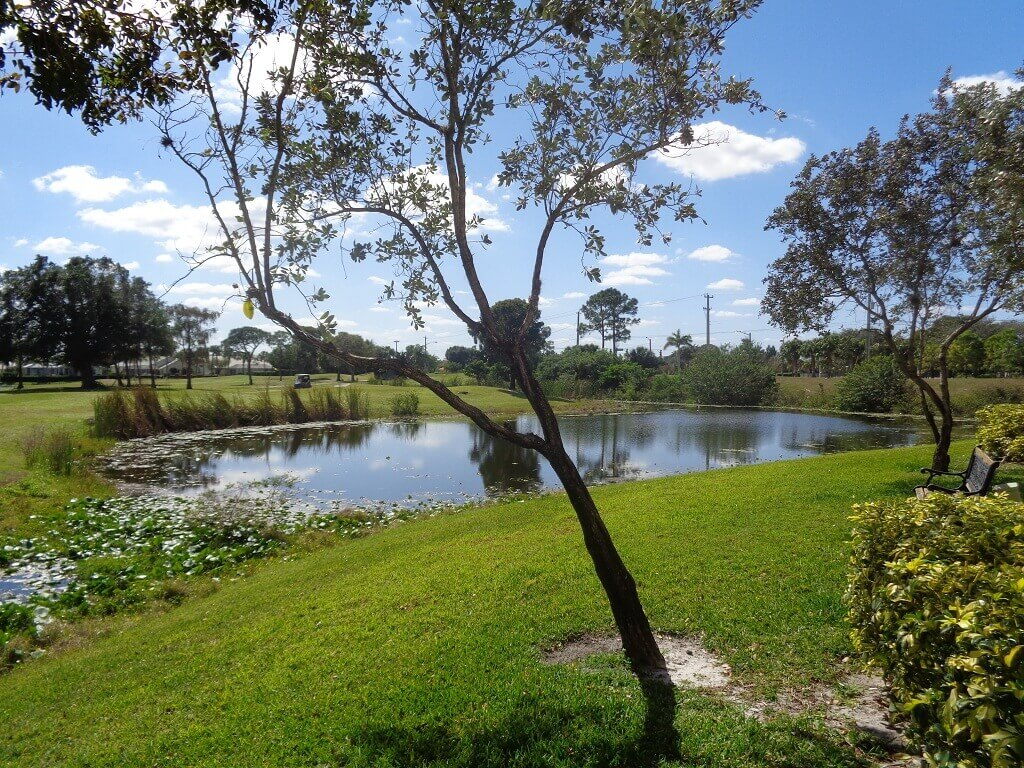 Arissa Place Recently Sold Homes in Wellington FL - Lake View