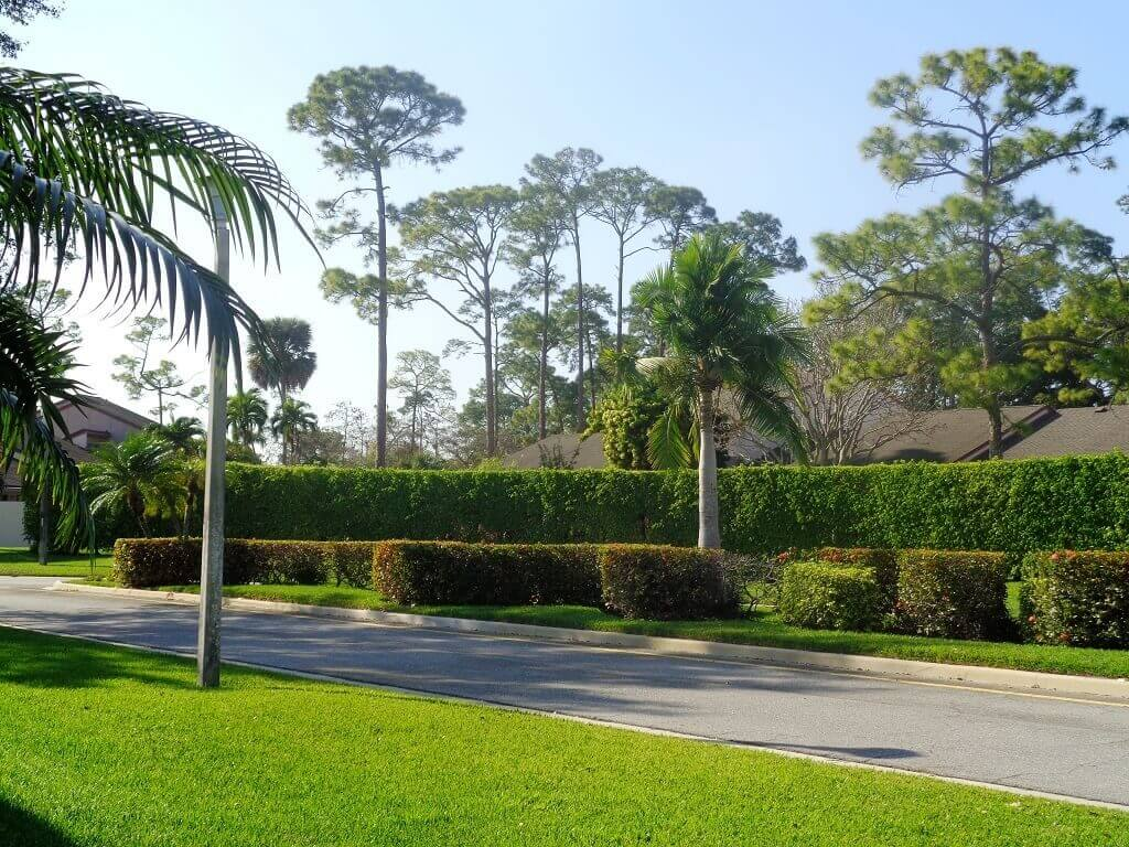 Hidden Landings Homes for Rent in Wellington FL