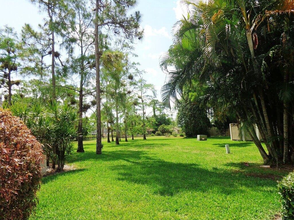 Hidden Pines Houses - Plenty of Green Space