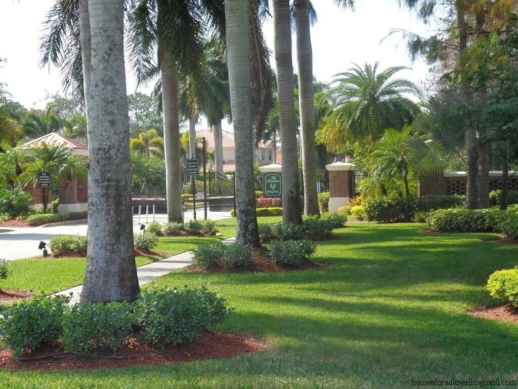 Binks Forest Recently Sold Homes in Wellington FL - The Preserve