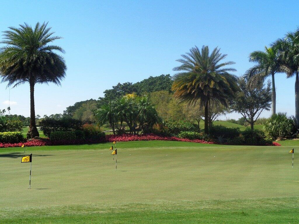 Wycliffe Country Club Property for Sale in Wellington FL