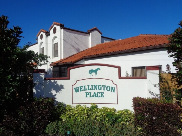Wellington Place Wellington FL Real Estate